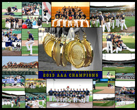 BASEBALL PACKAGE COLLAGE PRINT  1:16x20 1:8x10